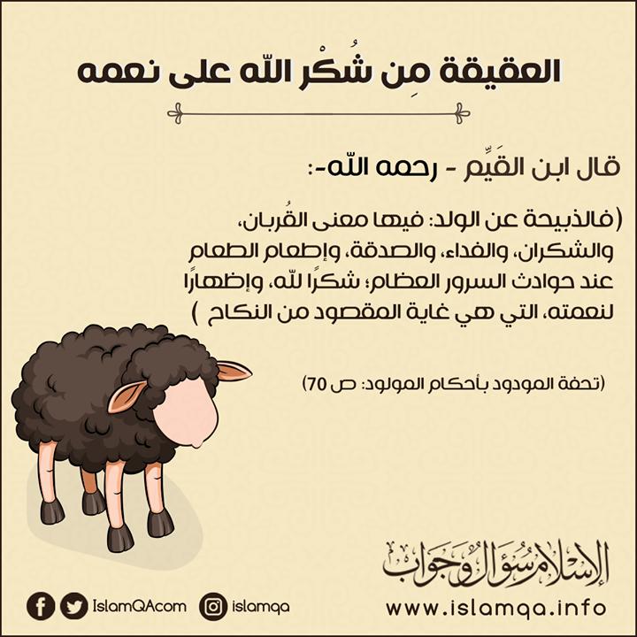 هذه السنن النبوية والأحكام الشرعية الواردة في العقيقة Http Ift Tt 2oxiqrz الإسلام سؤال وجواب Memes Movie Posters Ecard Meme
