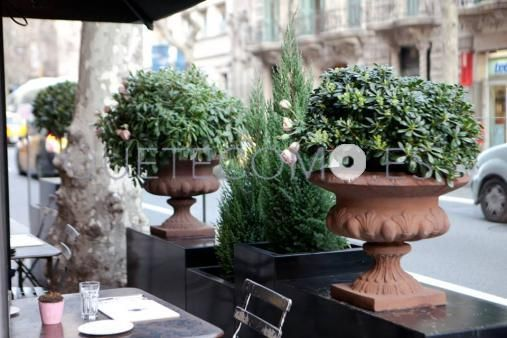 Terraza exterior | Restaurante tienda gourmet Cornelia and Co en Barcelona