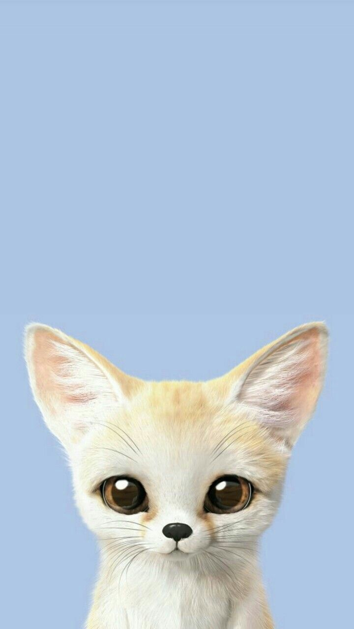 обой фон милые животное | Иллюстрации кошек, Милые котики ...