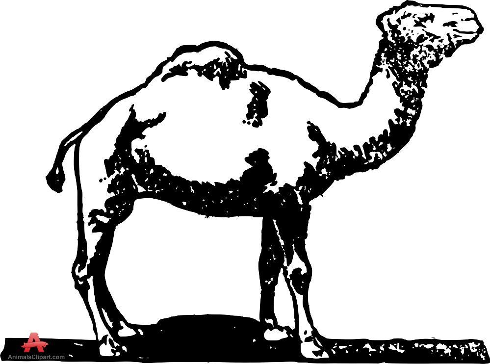Camel Clip Art - Camel Vector Free - Free Transparent PNG Clipart Images  Download