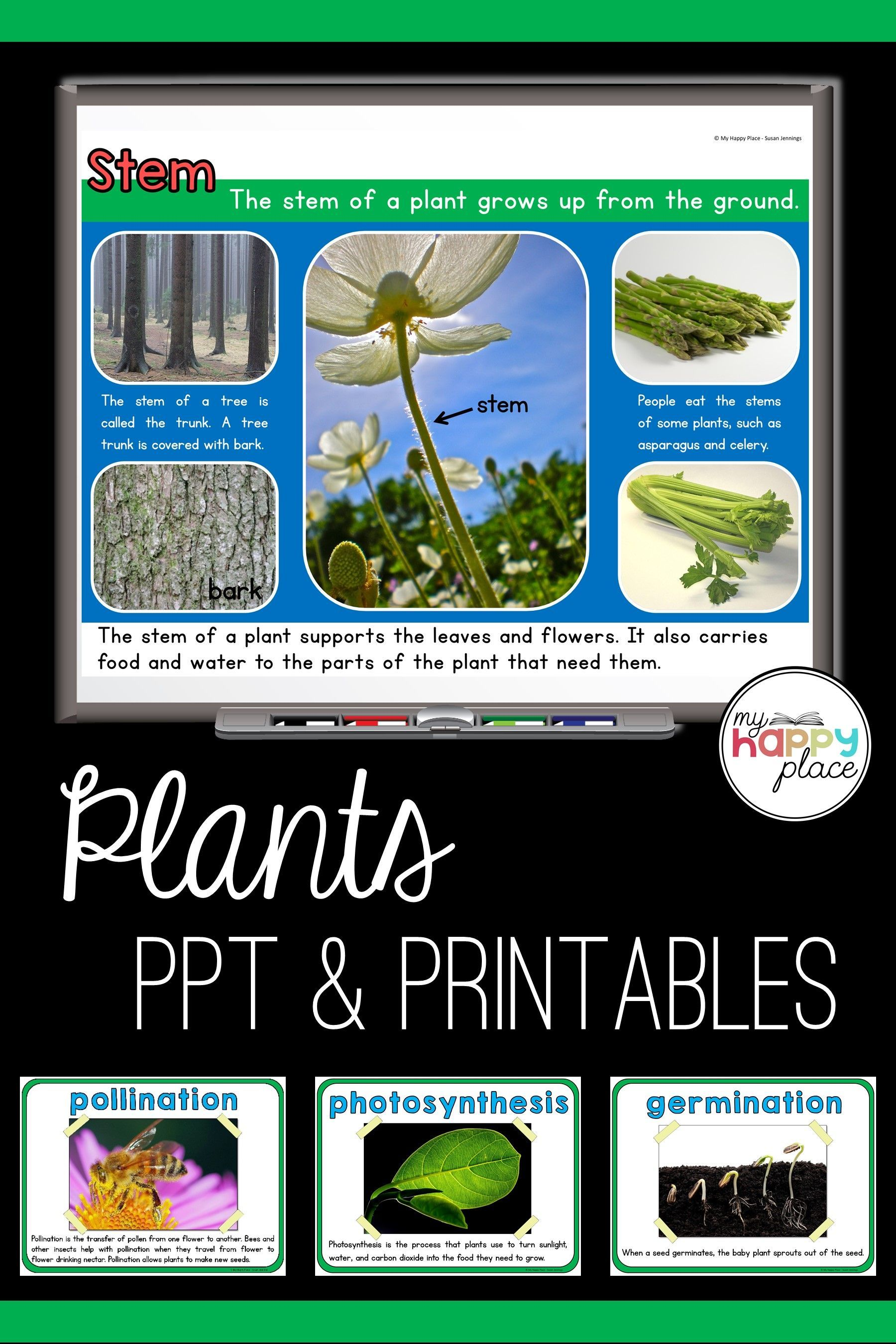 Plants Unit With Powerpoint Writing Materials And More
