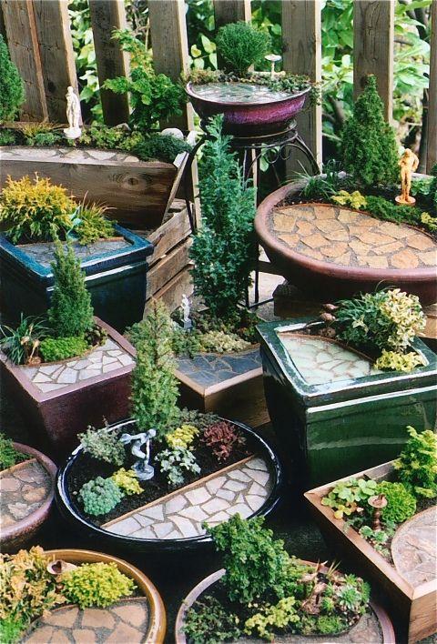 Miniature Garden Beginnings Still Crazy After All These Years