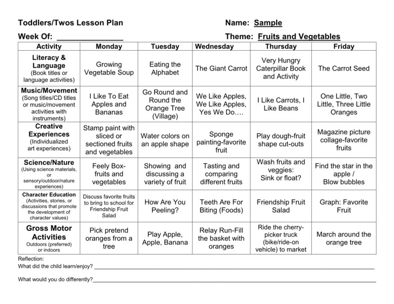 Provider Sample Lesson Plan Template Page5 Lessons Lesson Plan
