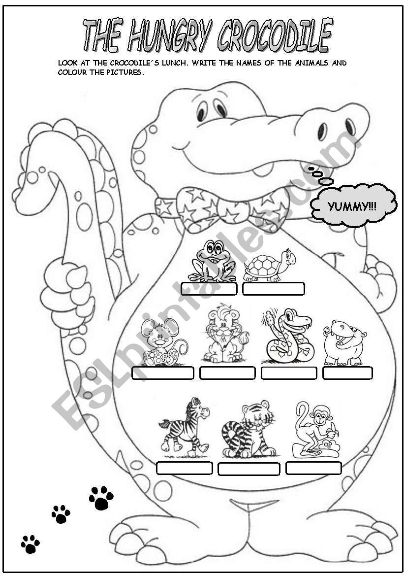 The Crocodile Was Hungry And For His Lunch Ate All These Animals Write The Names And Then Colour The Pictures Hungry Crocodile Crocodile Animal Science