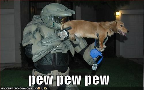 tee hee / http://motleydogs.com/wp-content/uploads/2012/01/Funny-Dog-picture-with-caption-pew-pew-pew.jpg