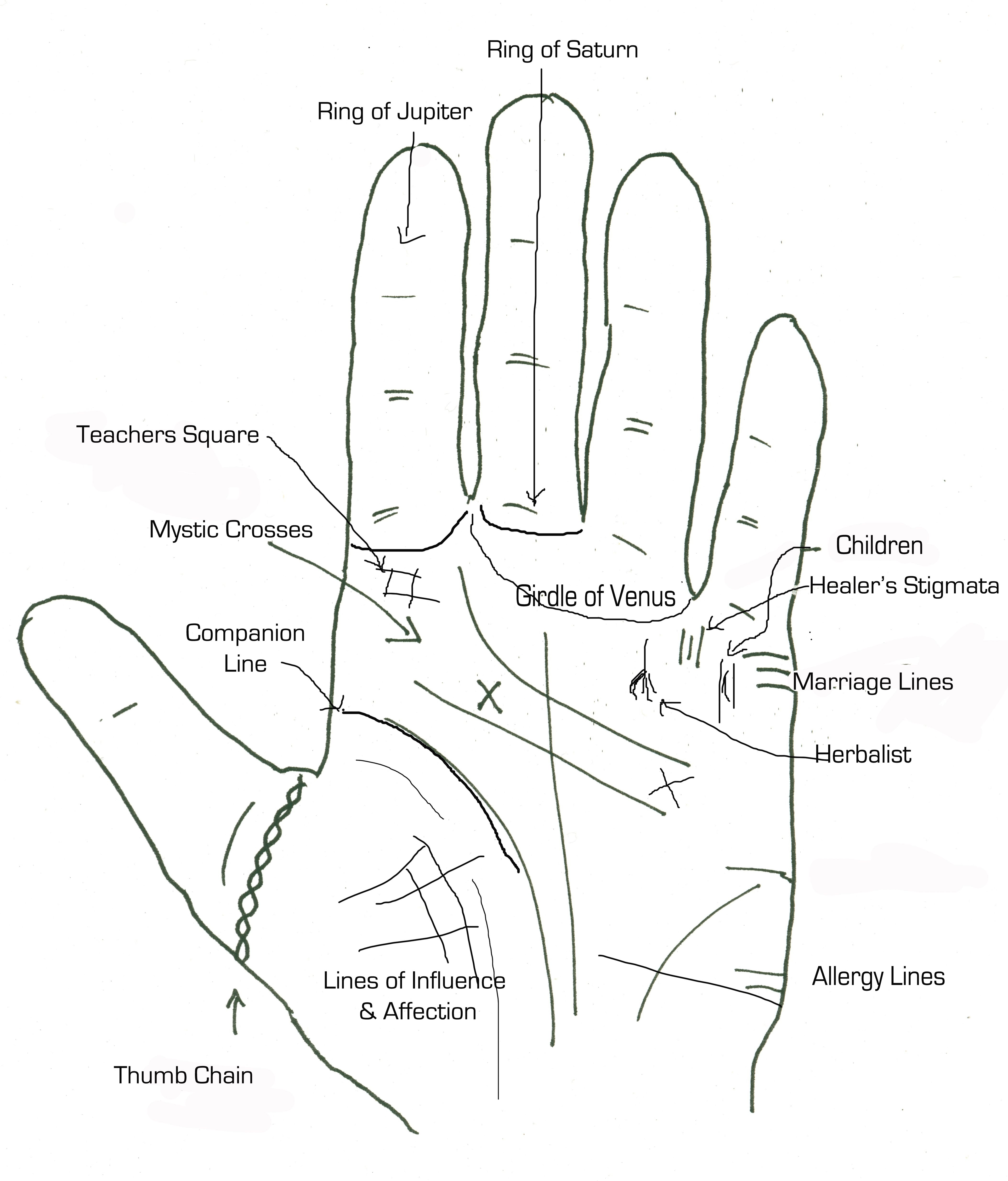 Palmistry: the lines of wealth and other signs on the palm, indicating financial solvency