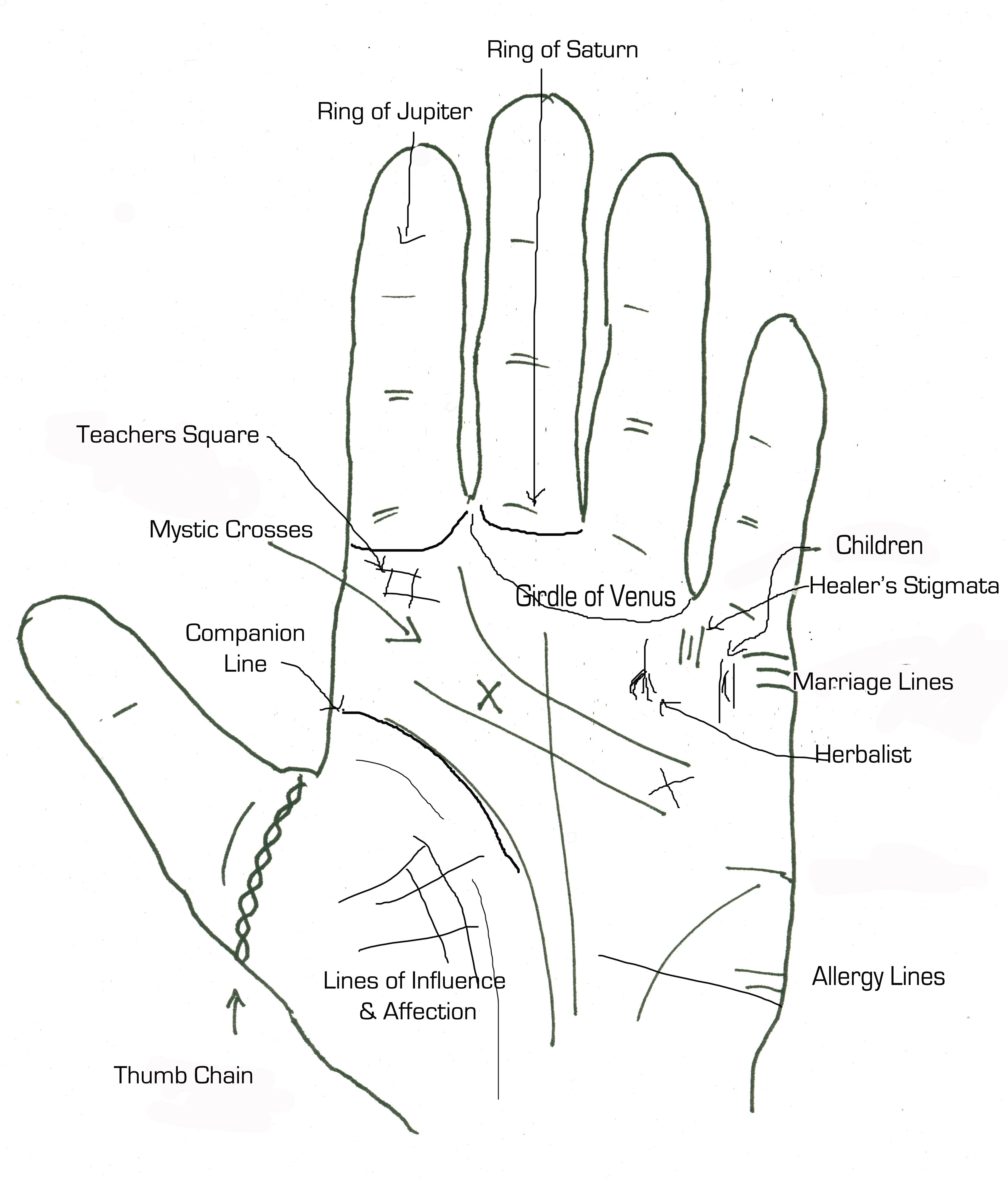Palmistry Handouts