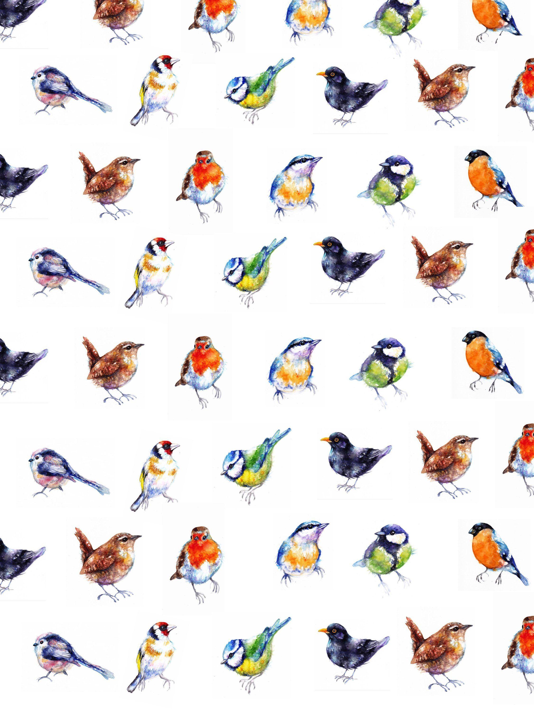 Wrapping Paper,Birds,Art,art print,best friend gift,Gift