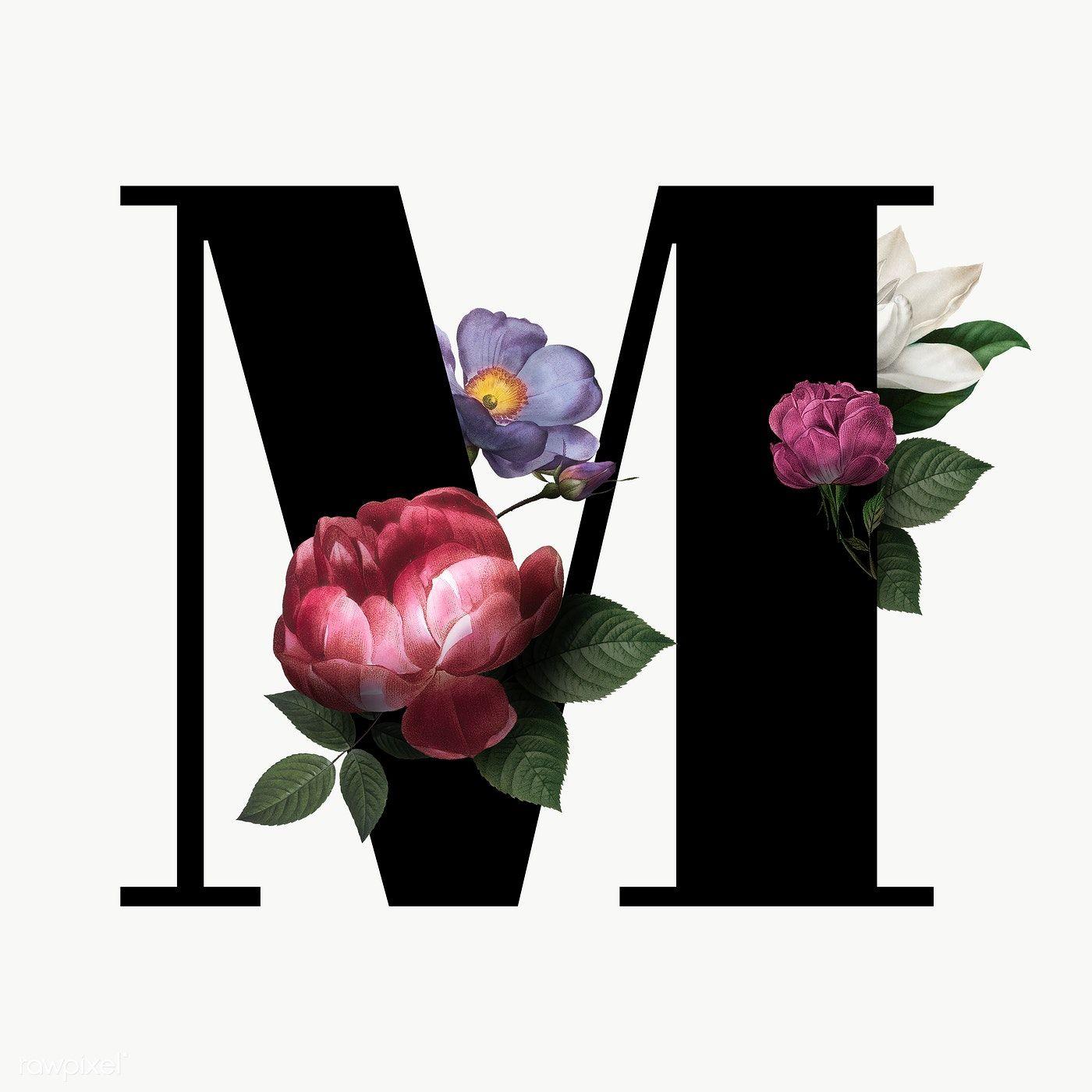 Classic And Elegant Floral Alphabet Font Letter M Transparent Png Free Image By Rawpixel Com Manota Fonts Alphabet Lettering Fonts Lettering Alphabet Fonts