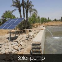 Solar Energy Solution Providers: Novergy India