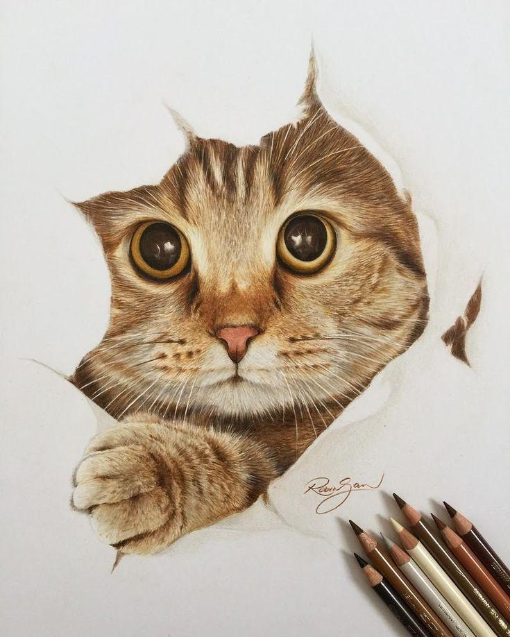 Realistic Color Pencil Animal Drawings Pinturas De Animais