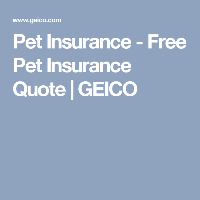 Geico Get A Quote Custom Pet Insurance  Free Pet Insurance Quote  Geico  Hobbies  Pinterest