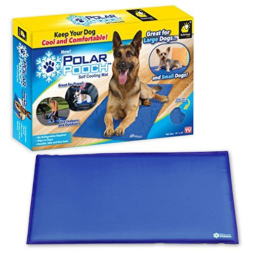 Dog Bed Mats Polar Pooch Smart Cooling Mat By Bulbhead For Dogs To Help Regulate Body Temperature You Can Find O Dog Pet Beds Dog Bed Mat Outdoor Dog Mat