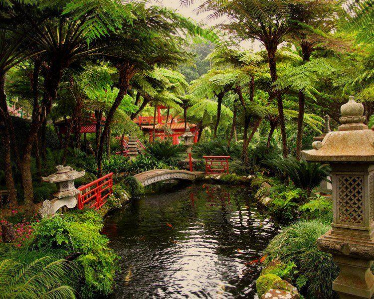 Jardin japonais et déco zen en 15 idées d\'aménagement   Japan ...