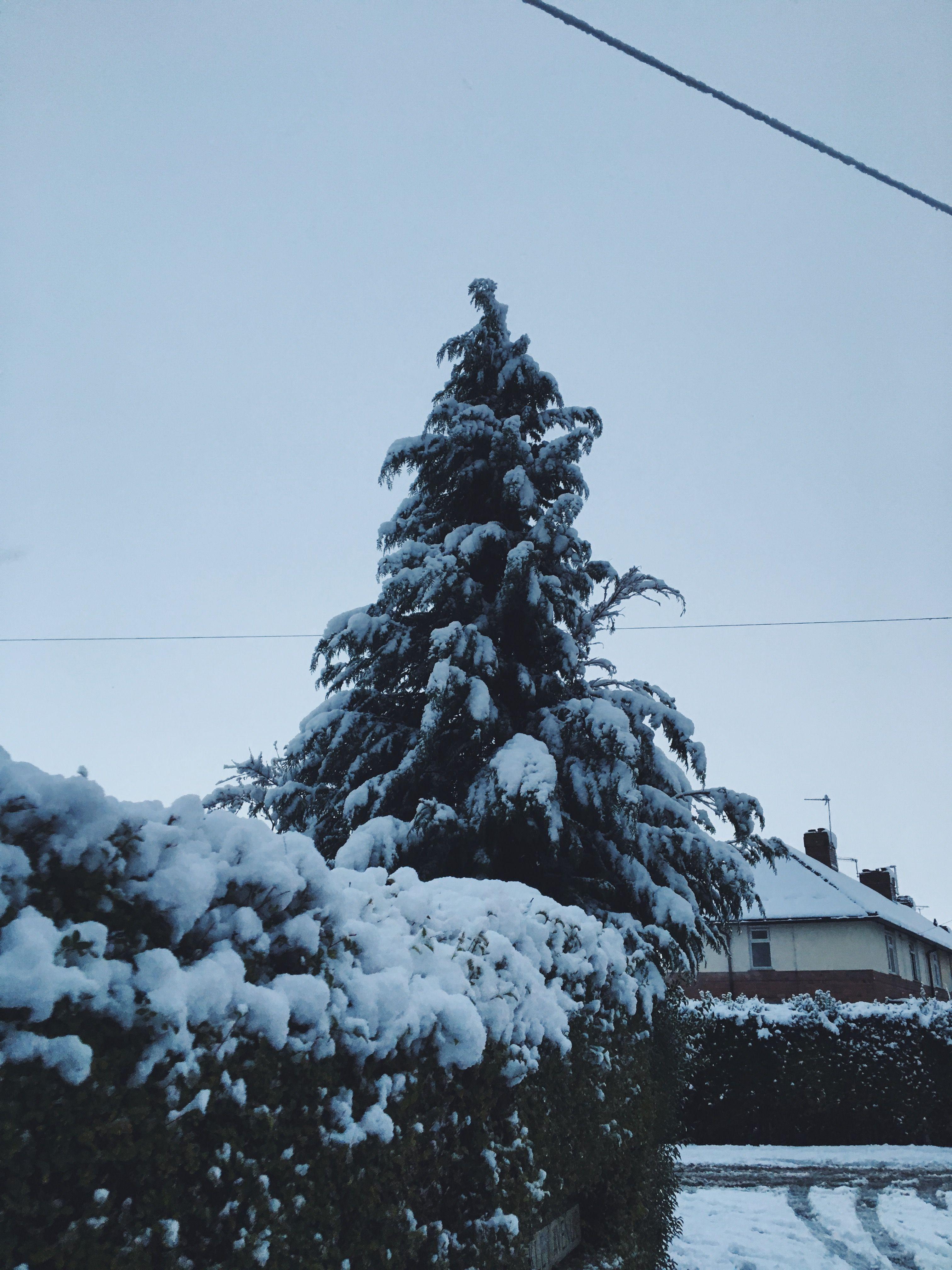 aesthetic aesthetictumblr snow christmas