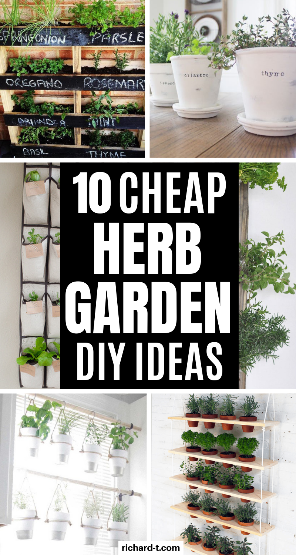 10 DIY Herb Garden Ideas That Look Professional