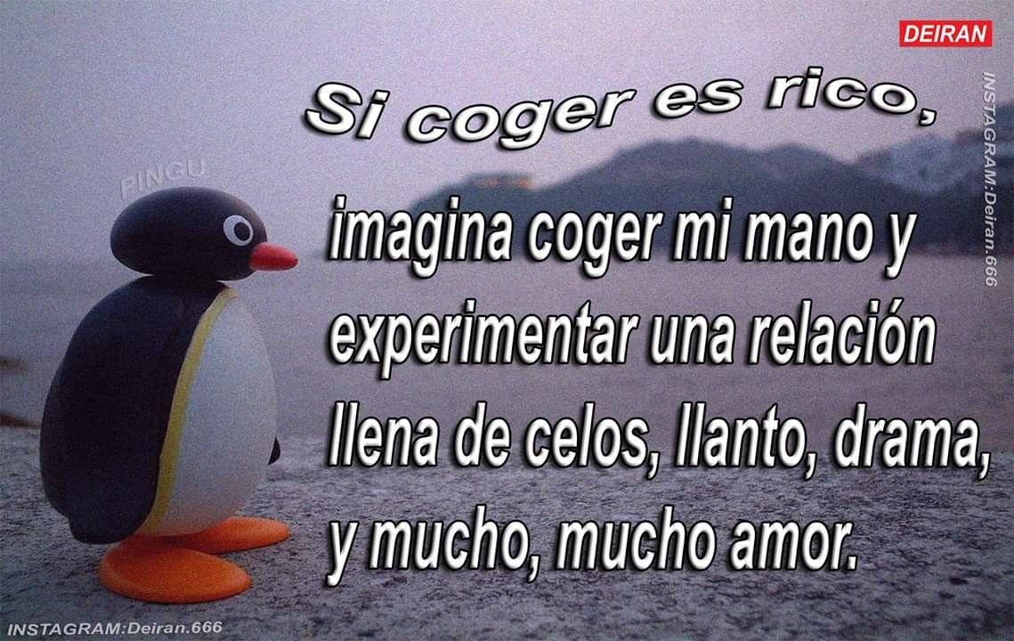 Alv Que Romantico V Frases Tontas Frases Cursis Frases De Pinguinos