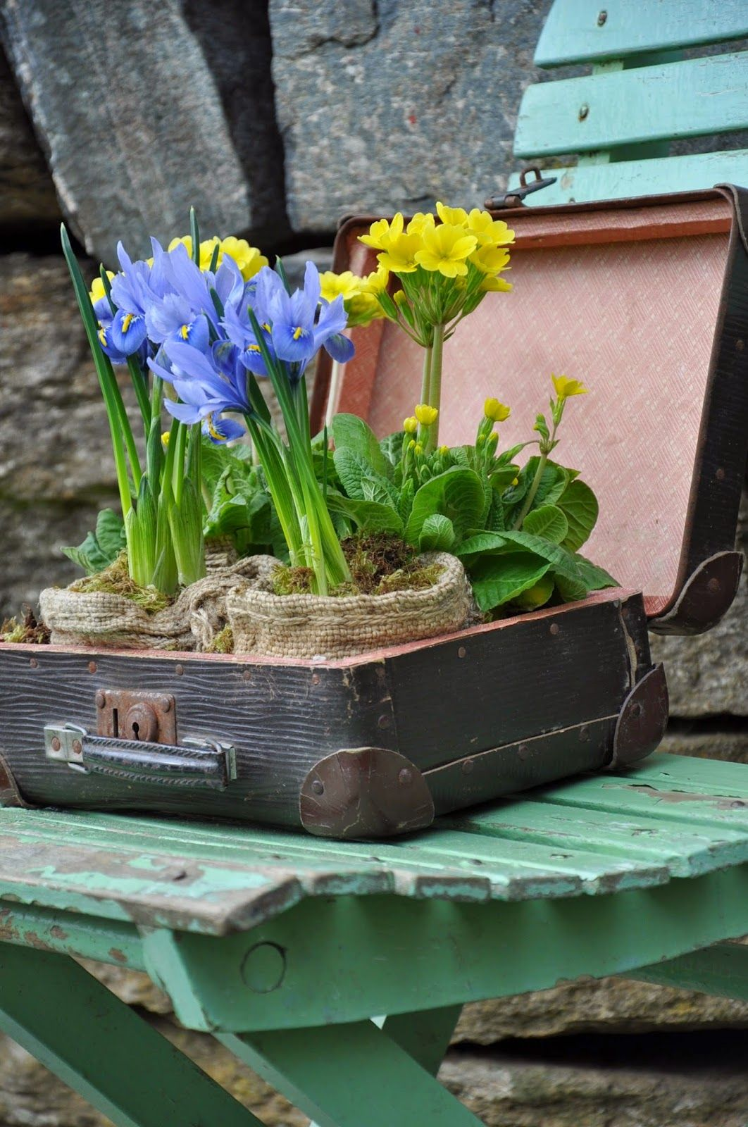 love this idea of using an old suitcase to display flowers