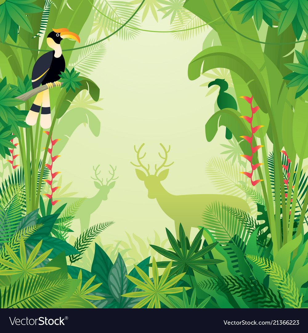 Hornbill and deer in tropical jungle background vector