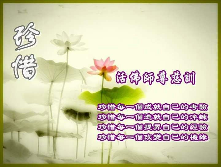 pin by kimm yeo on chinese quotes wisdoms home decor chinese