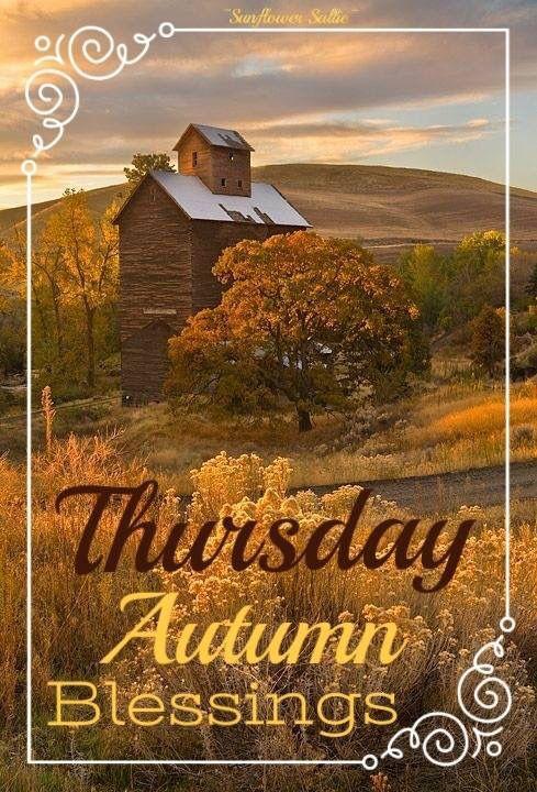 Happy Thursday!   | Good morning thursday, Good morning