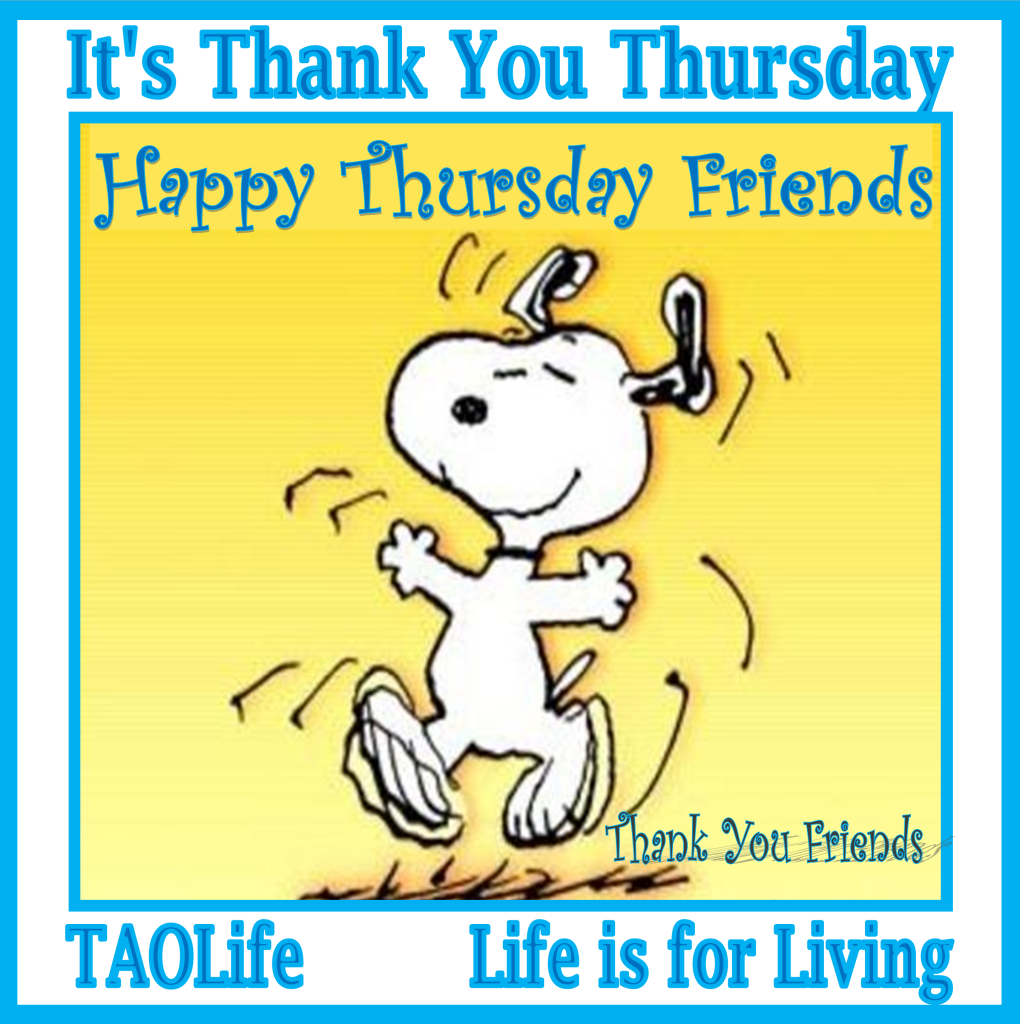 Thursday Quotes And Images Happy Thursday Qoutes  Poster It's Thank You Thursday  Happy