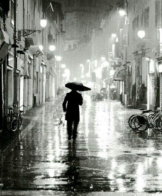 Pluviophile Rain Umbrella