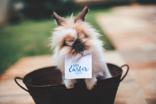 Happy Easter 2020 Images Pictures Photos Hd Happy Easter