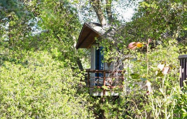 Deze Amerikaanse boomhutten kun je boeken via Airbnb - Manners.nl