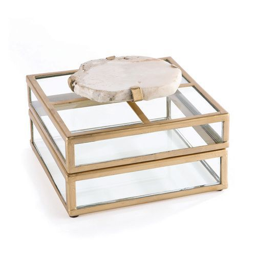 Fossilized Clam Glass Display Box Click to shop Interior decorating