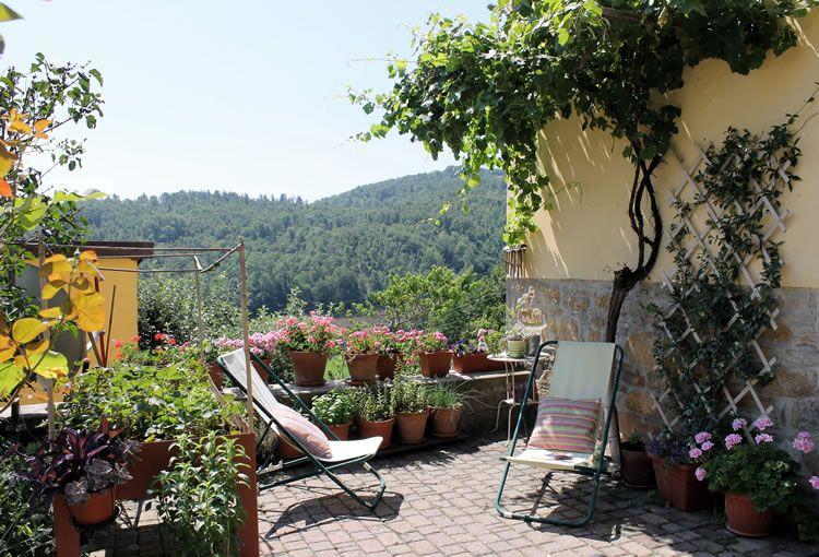La terrazza con la pergola di uva e il tavolo da orto sul balcone, a ...