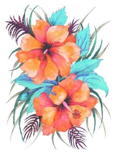 Tropical Flower Orange Hibiscus Art Print Designs