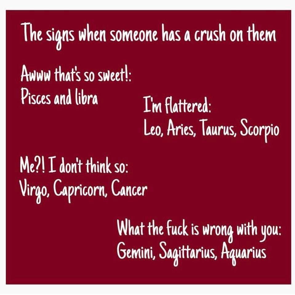 Sagittarius: I simply say it's ok i can't tell u how to feel