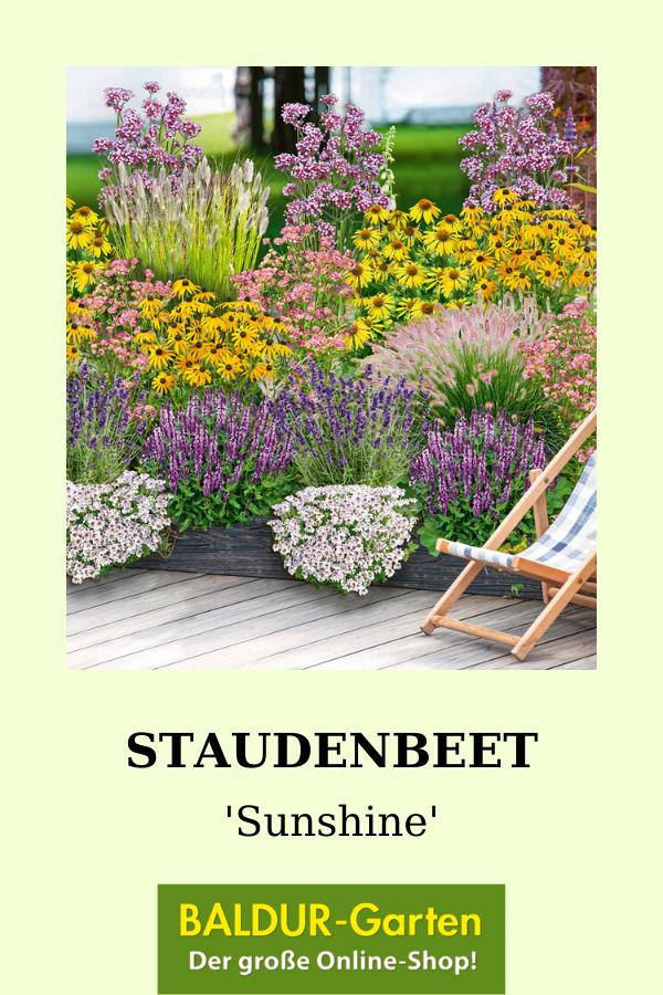 Mein Schoner Garten Staudenbeet Sunshine Love Baldur Garten In 2020 Staudenbeet Vorgarten Bepflanzen Winterharte Stauden