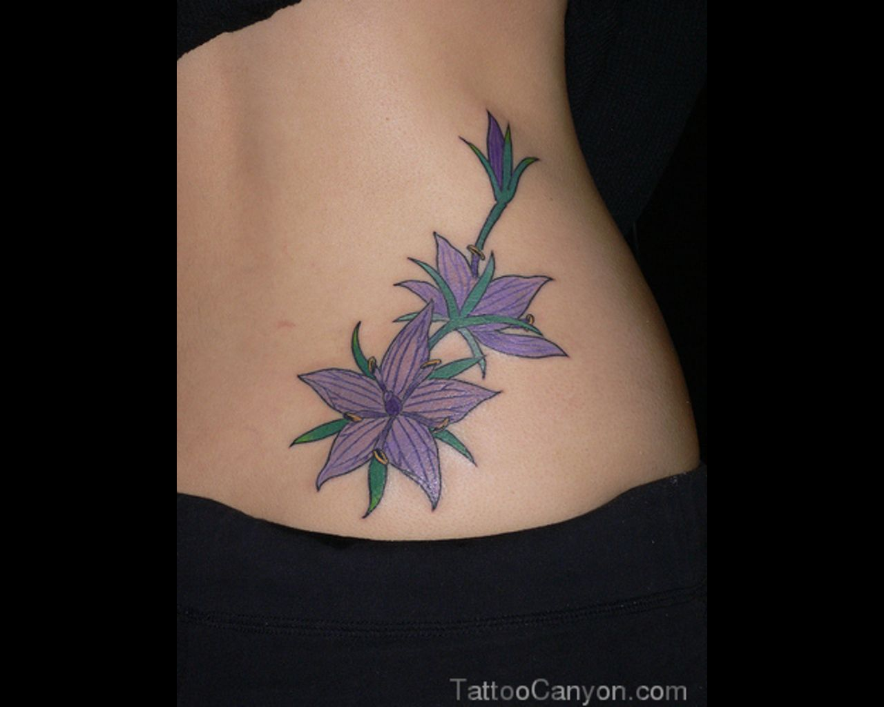 17884 Jasmine Flowers Tattoo Tattoo Design 1280x1024g Tattoo