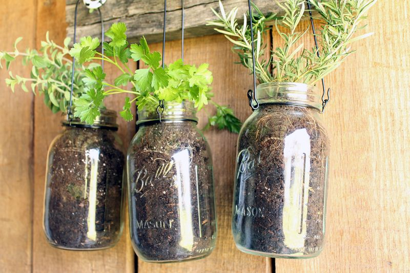 Add this mason jar herb garden to your outdoor decor this summer! You can also bring it indoors all year!