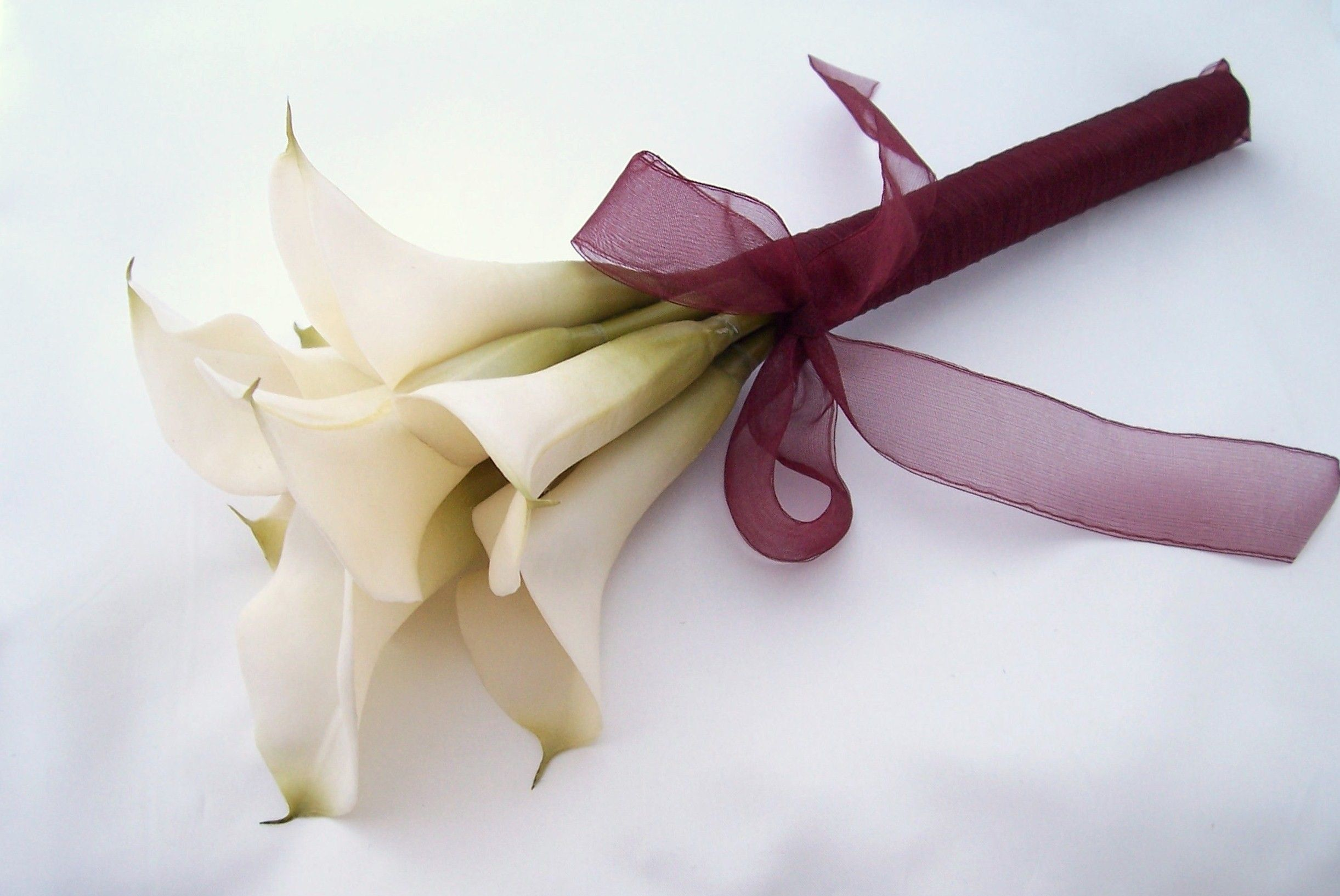 calla lilly boquets Names and Meanings of Flowers
