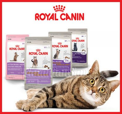 Royal Canin Canada Coupon 10 Off Spayed Neutered Formula Free