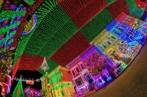 Osborne Lights At Disney World   Disney Tourist Blog