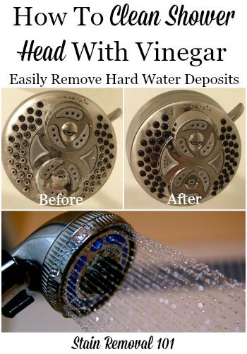 How To Clean Shower Head With Vinegar Shower Cleaner Cleaning Shower Head Shower Heads