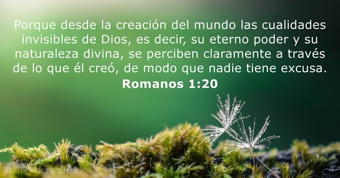 Textos Biblicos Sobre El Medio Ambiente Buscar Con Google In The Beginning God Rejoice And Be Glad Daily Bible Verse