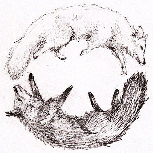 Arctic Fox Art Tumblr
