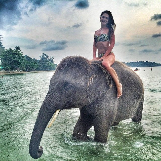 elephant-sex-with-girls-naked-girl-ready-to-have-sex