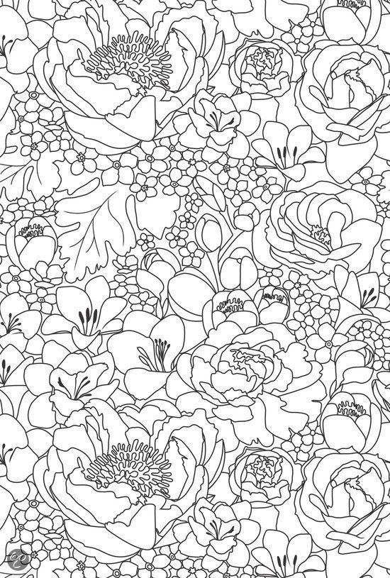 Kleurplaten Volwassen Bloemen.Bol Com Het Enige Echte Kleurboek Voor Volwassenen Boeken