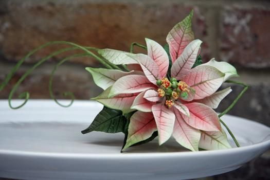 Lilly Clay Poinsettia Flower Cookie Cutter Fruit or Fondant Cutter
