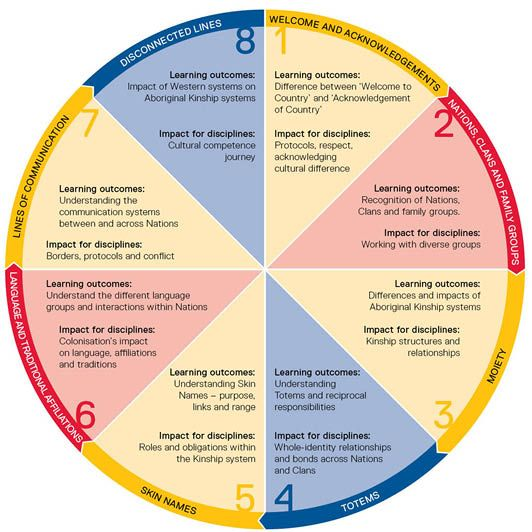 A diagram showing the eight modules of kinship learning and the ...