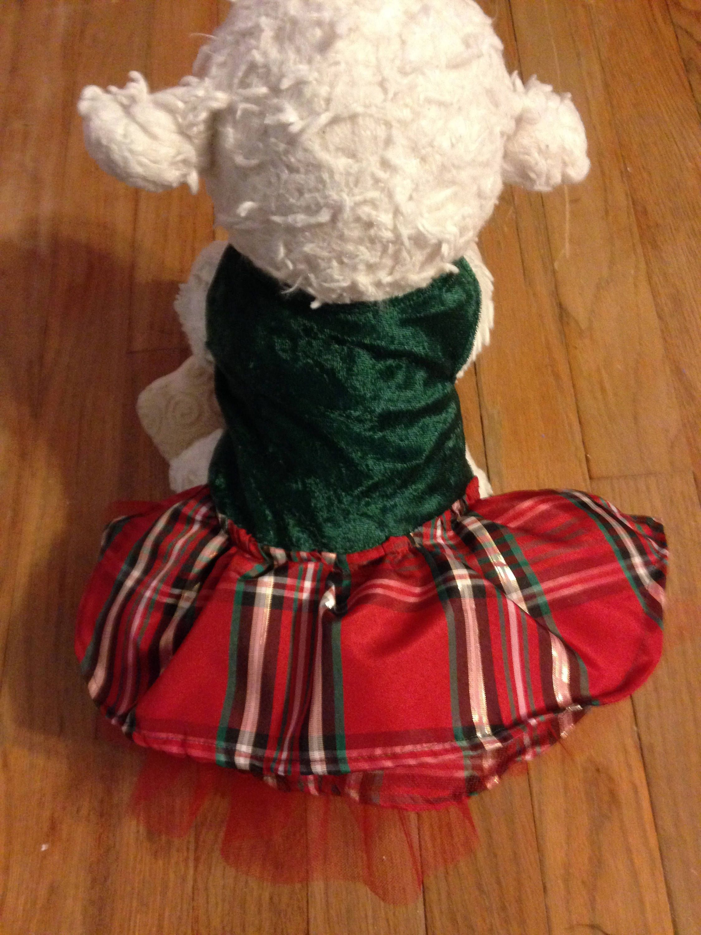 Eclair Green and Red dress, plaid, Chihuahua, yorkie