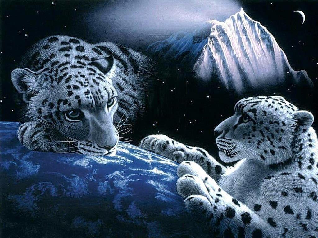 Wallpaper download 3d - 3d Wallpaper Free Download 3d Wallpaper Download The Free Snow Leopards 3d Wallpaper