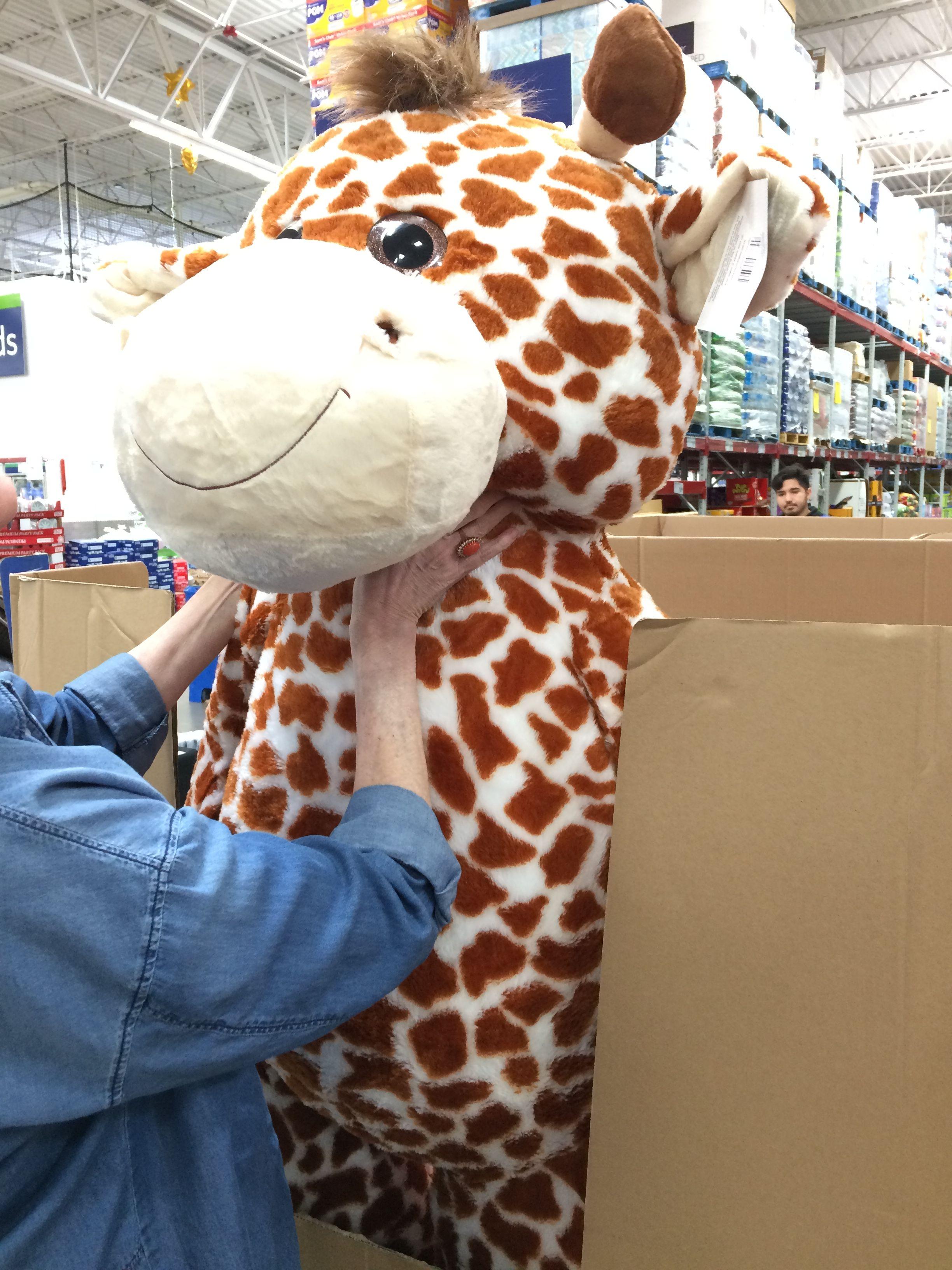 Giant Stuffed Giraffe Giant Stuffed Giraffe Giraffe Cute [ 3264 x 2448 Pixel ]