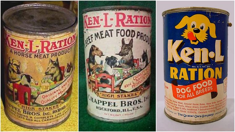 how old to start feeding puppies wet food